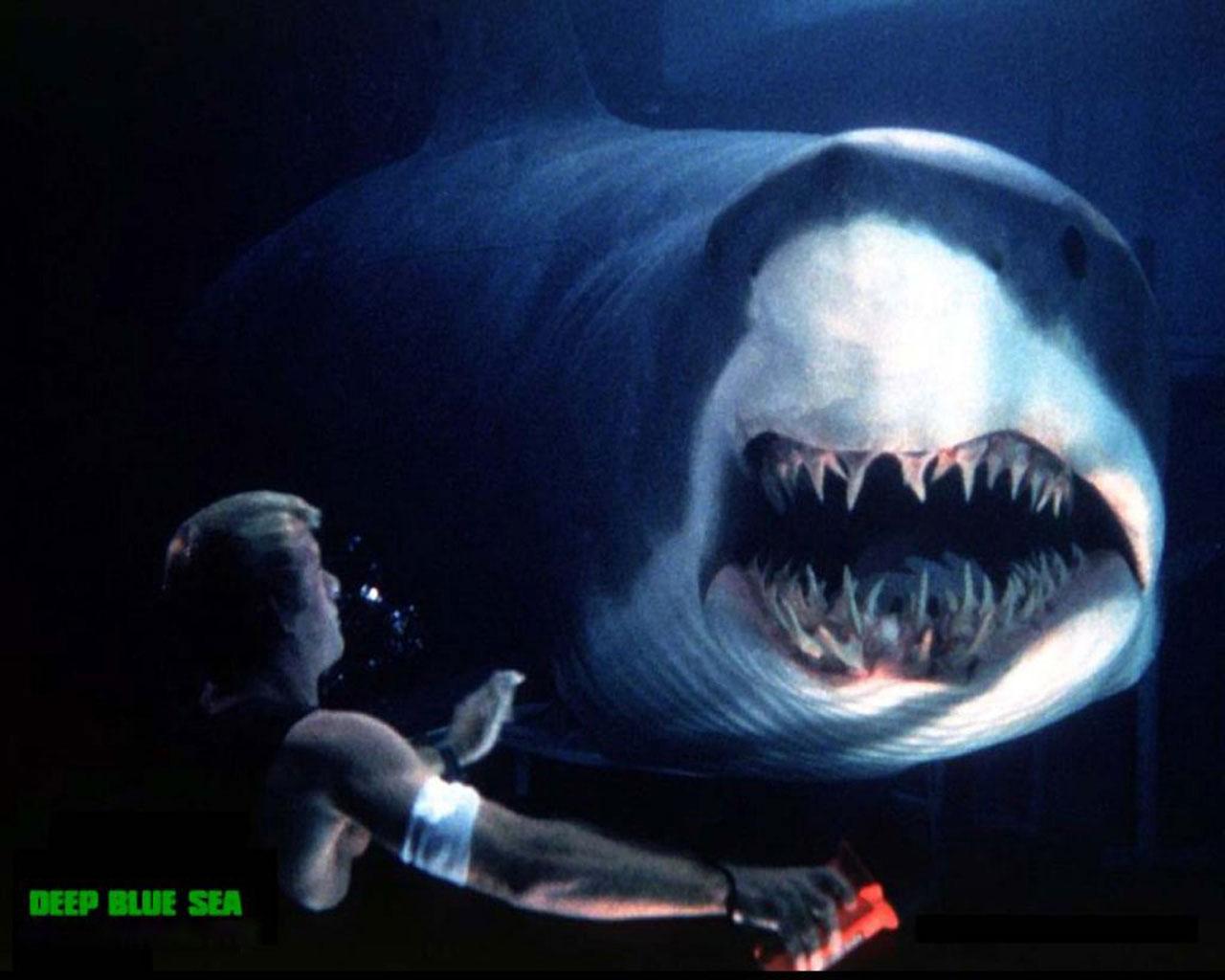 рассмотрим, почему фильм о жизни на подлодке акула они выламываются